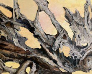 Driftwood 3 at Sunset